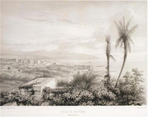 Ligature juive des palmiers a Sanremo